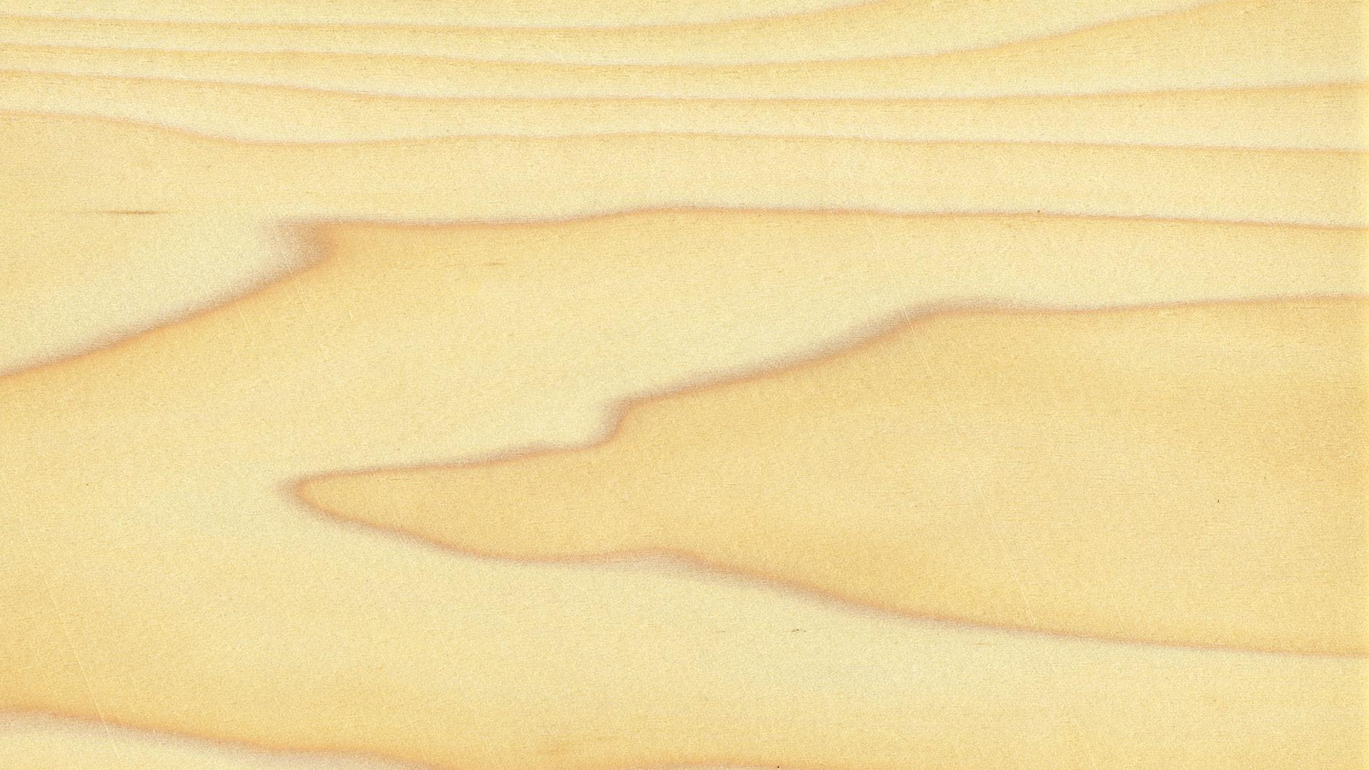 Poplar grain 1920x1080