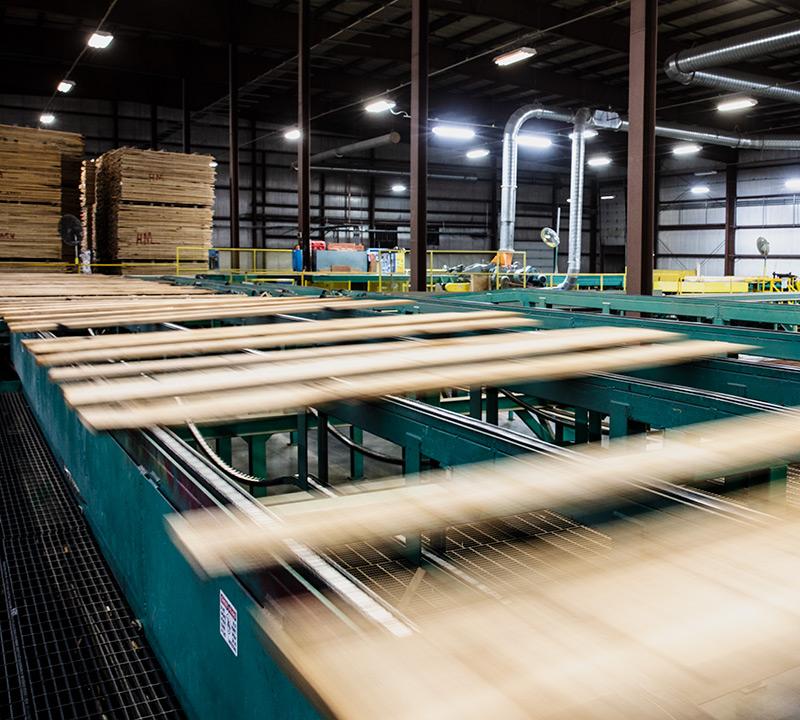 Processing over 50 million board feet per year