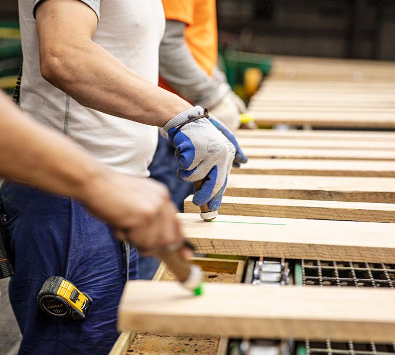 employees grading lumber